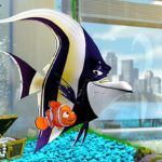 Finding Nemo 3D (Frank's Take).