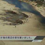 Pacific Rim… big foot strikes?