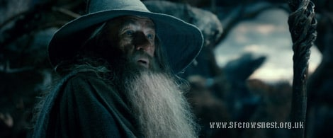 Gandalf spreads lockdown hope about COVID to good hobbits everywhere (video).