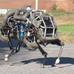 Wild army robot… WildCat.