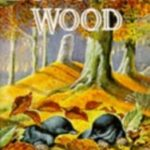 Duncton Wood (The Duncton Chronicles) by William Horwood (book review).
