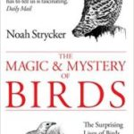The Magic & Mystery Of Birds by Noah Strycker (book review).