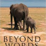 Beyond Worlds: What Animals Think by Carl Safina    (book review)