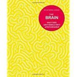 The Brain: What It Does, How It Works & How It Affects Behaviour by Dr. Catherine Loveday (book review).