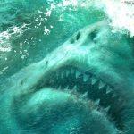 The Meg (trailer): Jason Statham, dinosaur hunter?