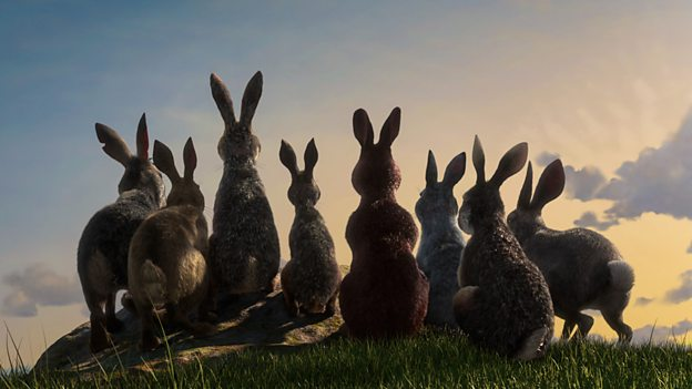 Watership Down: what a lot of Rabbit (BBC 1 trailer).