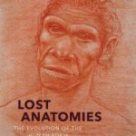 Lost Anatomies: The Evolution Of The Human Form by John Gurche (book review).