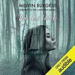 The Lost Witch by Melvin Burgess (audio book review).