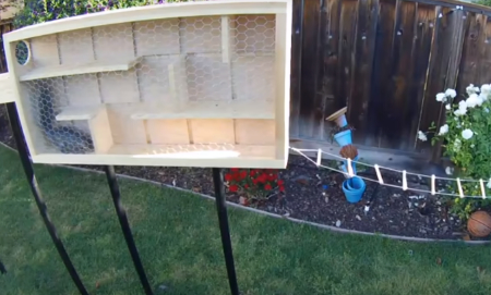 High Mech squirrel-proof bird feeder wages an offensive war (weird news).