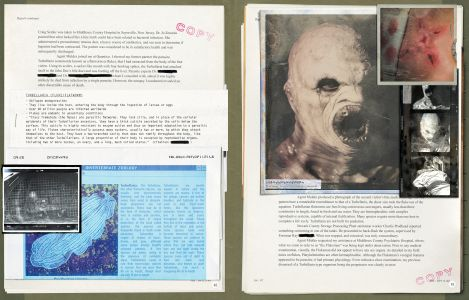 X-Files_p050-051